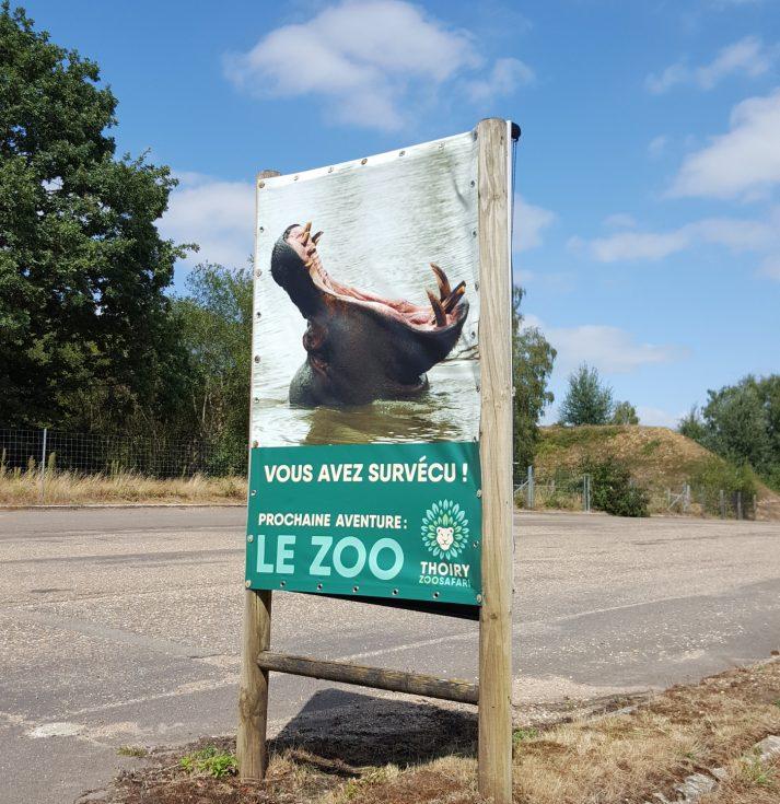 zoo de thoiry - paris - famille - visite